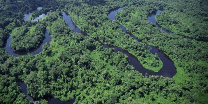 amazonas-imago